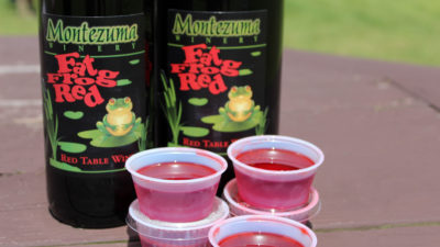 Fat Frog Red Jell-O shots